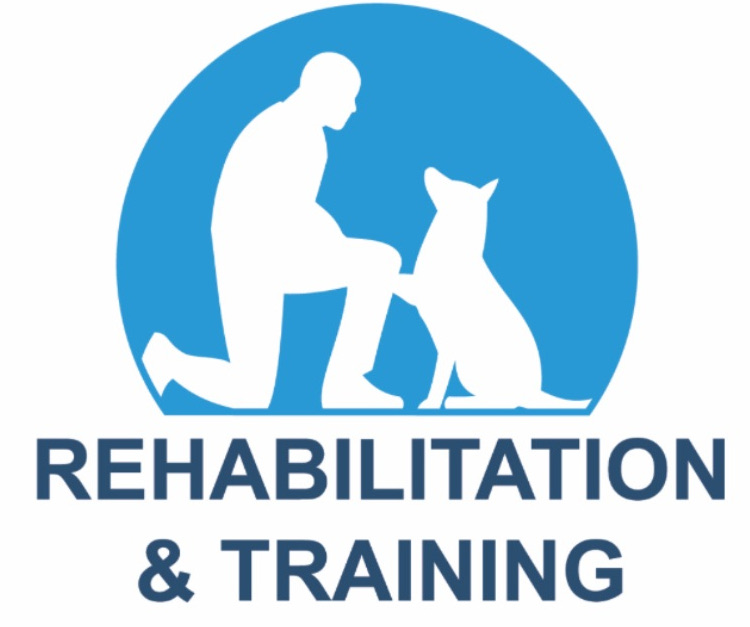 Steve Hutley Dog Rehabilitation & Training